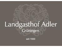 Adler, 8627 Grüningen