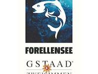 Forellensee Gstaad-Zweisimmen 'Im Einklang mit den, 3770 Zweisimmen