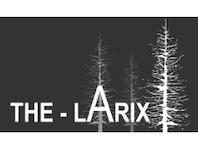 The Larix Hotel & Restaurant, 3906 Saas-Fee