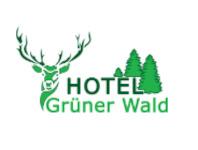Hotel Grüner Wald, 6467 Schattdorf
